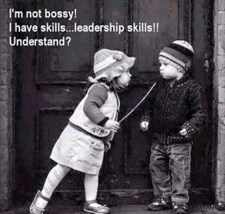 Click image for larger version  Name:Bossy.jpg Views:142 Size:130.1 KB ID:100544
