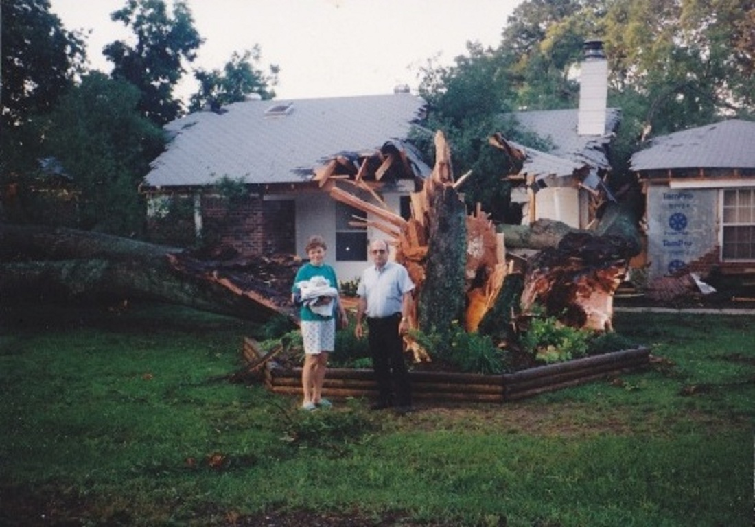 Click image for larger version  Name:Big Tree!.jpg Views:58 Size:254.3 KB ID:104722