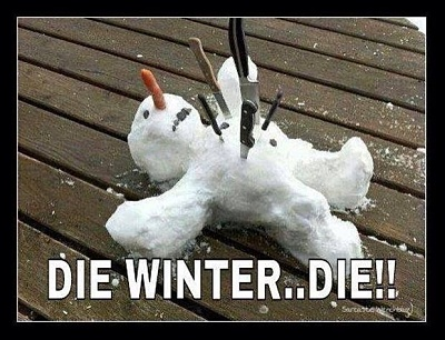 Click image for larger version  Name:61457-Die-Winter.jpg Views:91 Size:63.8 KB ID:126593