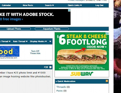 Click image for larger version  Name:subway ad.jpg Views:56 Size:87.9 KB ID:128580