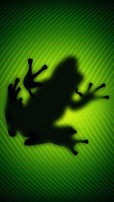 Click image for larger version  Name:Frog-wallpaper-11242548.jpg Views:137 Size:67.6 KB ID:148773
