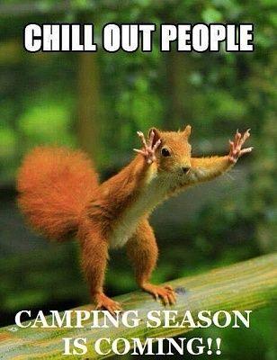 Name:  camp squirrel.JPG Views: 1010 Size:  26.1 KB