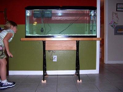Click image for larger version  Name:aquarium004small.jpg Views:134 Size:55.5 KB ID:176