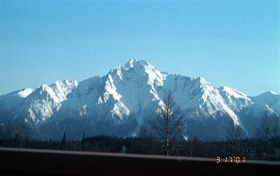 Click image for larger version  Name:Pioneer Peak 3-17-2001.14.jpg Views:46 Size:256.7 KB ID:190398