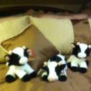 Name:  cows.jpg Views: 204 Size:  4.9 KB