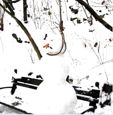 Click image for larger version  Name:Snowman.JPG Views:99 Size:70.9 KB ID:2163