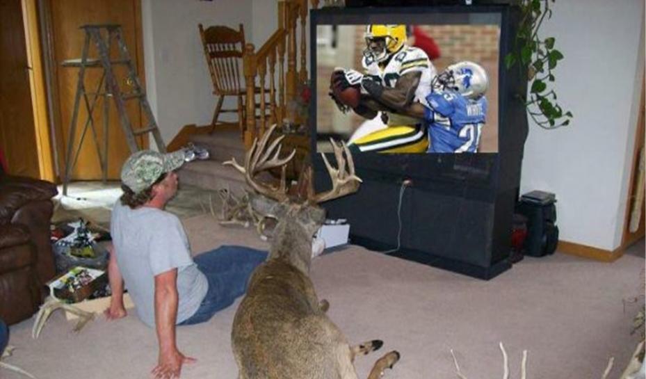 Click image for larger version  Name:Deer Season Over.jpg Views:133 Size:59.1 KB ID:22423