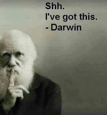 Click image for larger version  Name:Darwin Ssshhh.jpg Views:108 Size:31.7 KB ID:228657