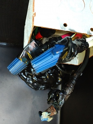 Click image for larger version  Name:Burned Wire 1.jpg Views:9 Size:226.6 KB ID:235914