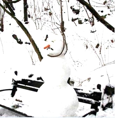 Click image for larger version  Name:Snowman.jpg Views:56 Size:46.3 KB ID:3133