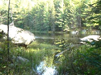 Click image for larger version  Name:Bat Lake Trail.jpg Views:57 Size:45.5 KB ID:3524