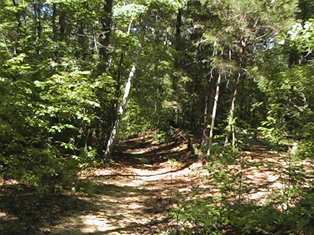 Click image for larger version  Name:Natchez trace32.jpg Views:95 Size:215.4 KB ID:378