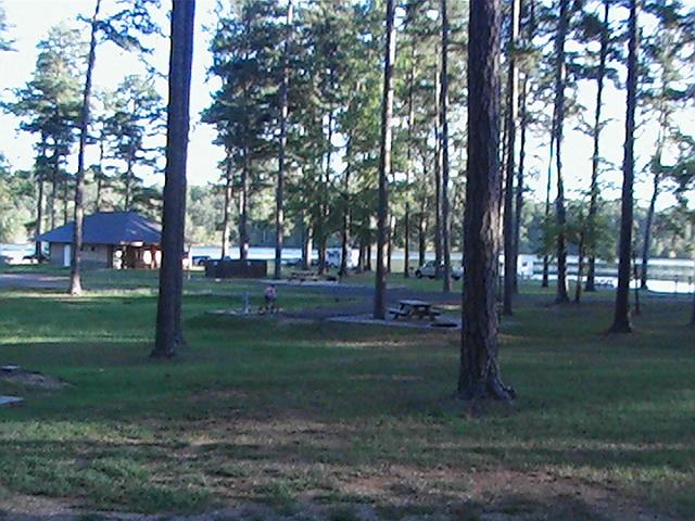 Click image for larger version  Name:Davis Lake Mississippi USDA05.jpg Views:85 Size:211.5 KB ID:382