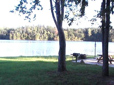 Click image for larger version  Name:Davis Lake Mississippi USDA01.jpg Views:142 Size:177.8 KB ID:388