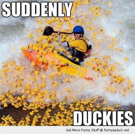 Click image for larger version  Name:funny-white-water-raft-boat-suddenly-attacked-rubber-ducks-pics.jpg Views:78 Size:48.6 KB ID:43046