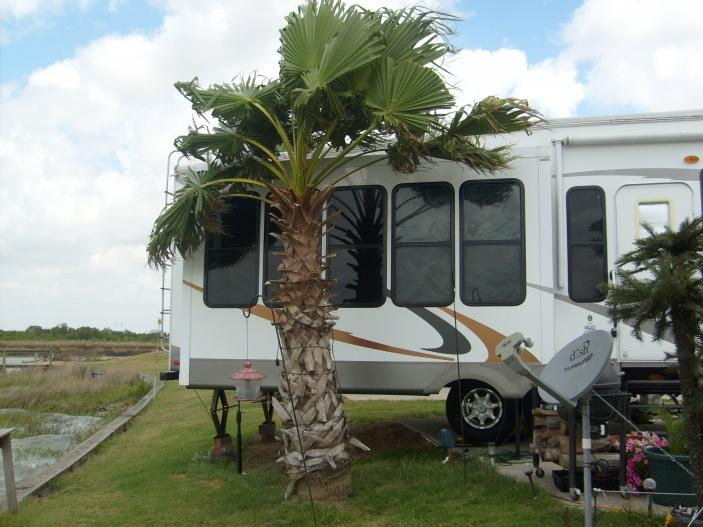 Click image for larger version  Name:RV-Truck 001.jpg Views:146 Size:58.3 KB ID:43789
