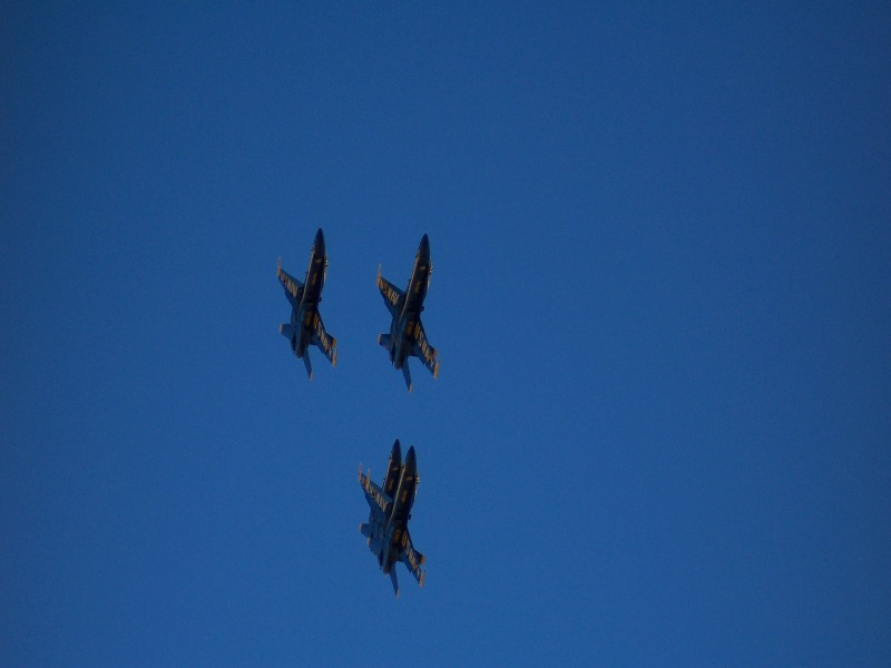 Click image for larger version  Name:blueangles01small.jpg Views:63 Size:57.6 KB ID:438