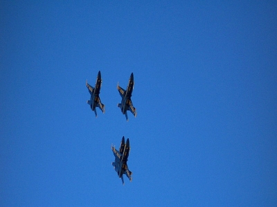 Click image for larger version  Name:blueangles01small.jpg Views:128 Size:57.6 KB ID:438