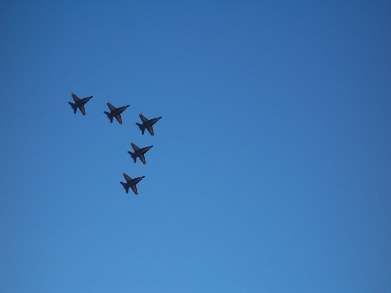 Click image for larger version  Name:blueangles04.jpg Views:61 Size:54.2 KB ID:440