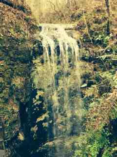 Name:  ImageUploadedByForest River Forums1388587043.437809.jpg Views: 205 Size:  11.0 KB