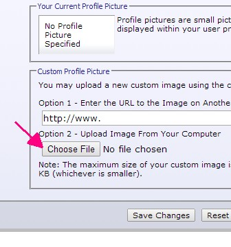 Name:   Step4 - Click Choose File for Option 2.jpg Views: 168 Size:  33.3 KB