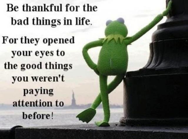 Click image for larger version  Name:kermit.jpg Views:138 Size:36.5 KB ID:47343