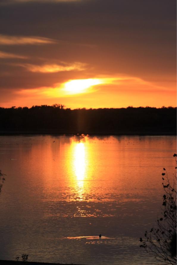 Click image for larger version  Name:ImageUploadedByForest River Forums1394334474.130076.jpg Views:266 Size:44.6 KB ID:47388