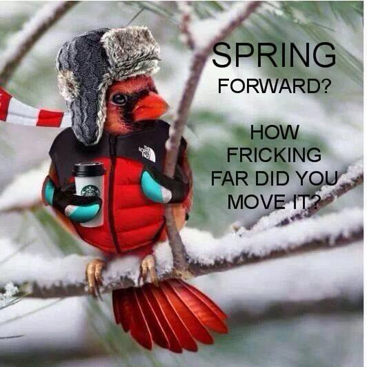 Click image for larger version  Name:Spring1.jpg Views:108 Size:45.4 KB ID:48381