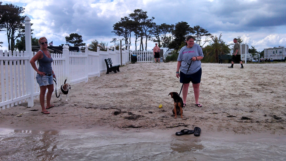 Click image for larger version  Name:dog beach.jpg Views:129 Size:409.0 KB ID:54756