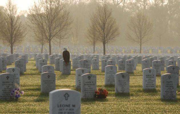 Click image for larger version  Name:eagle-on-tombstone.jpg Views:45 Size:39.7 KB ID:57122