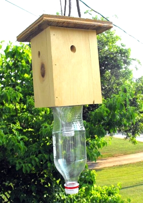Click image for larger version  Name:bee trap.jpg Views:3297 Size:59.1 KB ID:6101