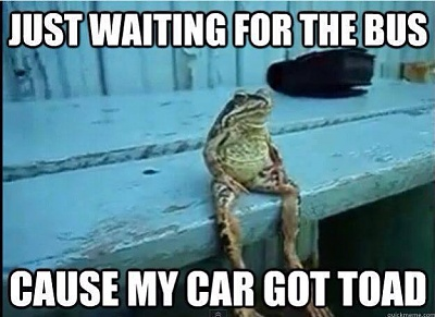 Click image for larger version  Name:10557180_10154479936260525_2232326261350485050_nFROG CAR GOT TOAD.jpg Views:182 Size:40.2 KB ID:61833
