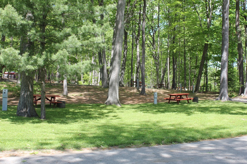 Click image for larger version  Name:NJ Campsite.jpg Views:85 Size:343.8 KB ID:63513