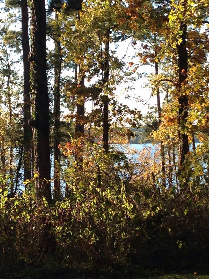 Click image for larger version  Name:ImageUploadedByForest River Forums1417058358.126405.jpg Views:281 Size:885.0 KB ID:66874