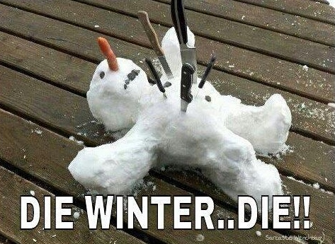 Click image for larger version  Name:1Die-Winter...Die-2-473x345.jpg Views:221 Size:165.7 KB ID:69274