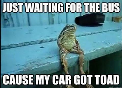 Click image for larger version  Name:11198492_985350208156515_1516211221_n CAR GOT TOAD.jpg Views:74 Size:30.4 KB ID:75680