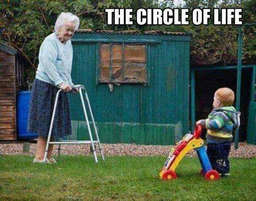 Click image for larger version  Name:Life.jpg Views:140 Size:49.0 KB ID:77526