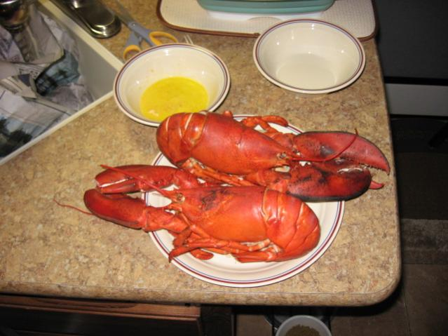 Click image for larger version  Name:Copy of LOBSTERS 007.jpg Views:27 Size:46.4 KB ID:7892