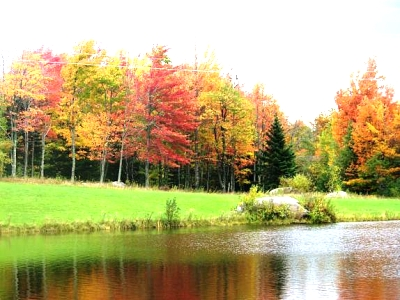 Click image for larger version  Name:10-3-11 Scenic Rout along Vt 242 and 105 Trip to Maine 2011 093 (16).jpg Views:123 Size:51.1 KB ID:9250