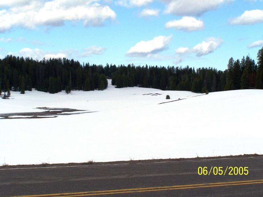 Click image for larger version  Name:6-5-05 CONTINENTAL DIVIDE east of Grand Teton N P WY 001.jpg Views:55 Size:53.1 KB ID:9340