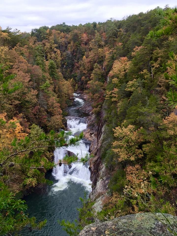 Click image for larger version  Name:Tallalulah Gorge.jpg Views:65 Size:265.6 KB ID:93759