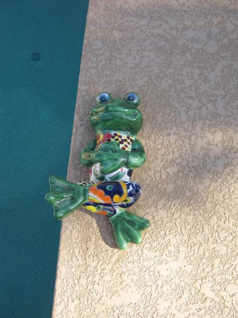 Click image for larger version  Name:FrogBig.jpg Views:32 Size:49.7 KB ID:9395