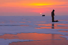 Name:  fish fishing.jpg Views: 161 Size:  6.8 KB