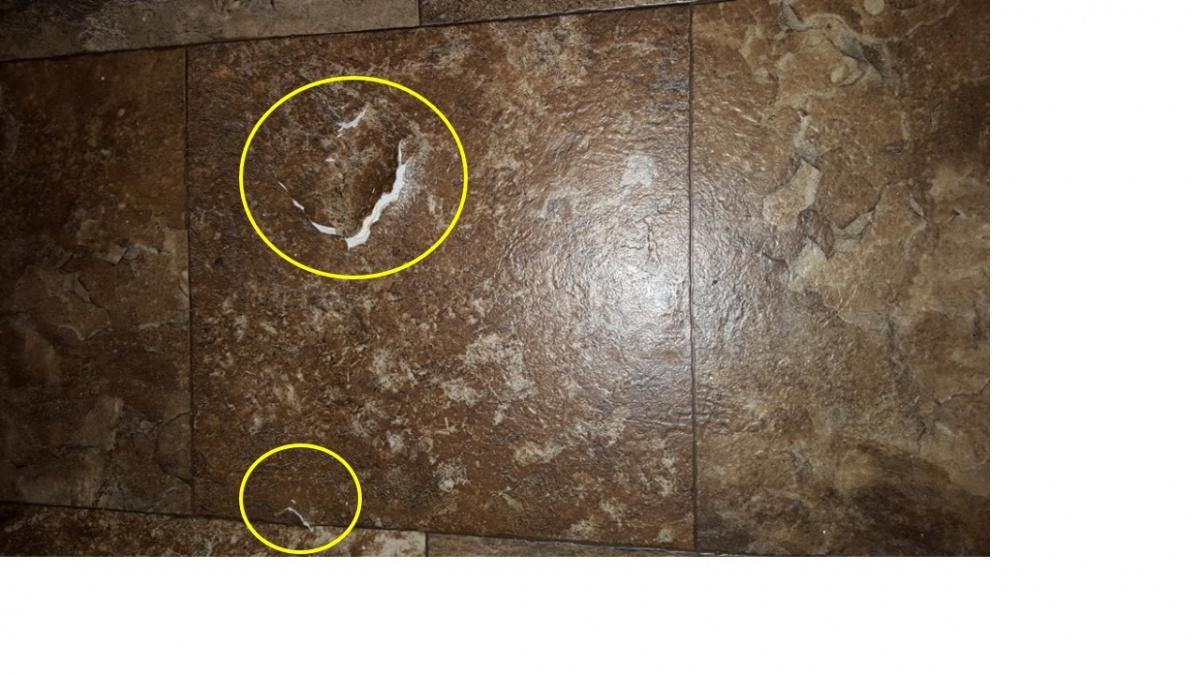 Click image for larger version  Name:damaged_floor_1.jpg Views:109 Size:252.8 KB ID:94937