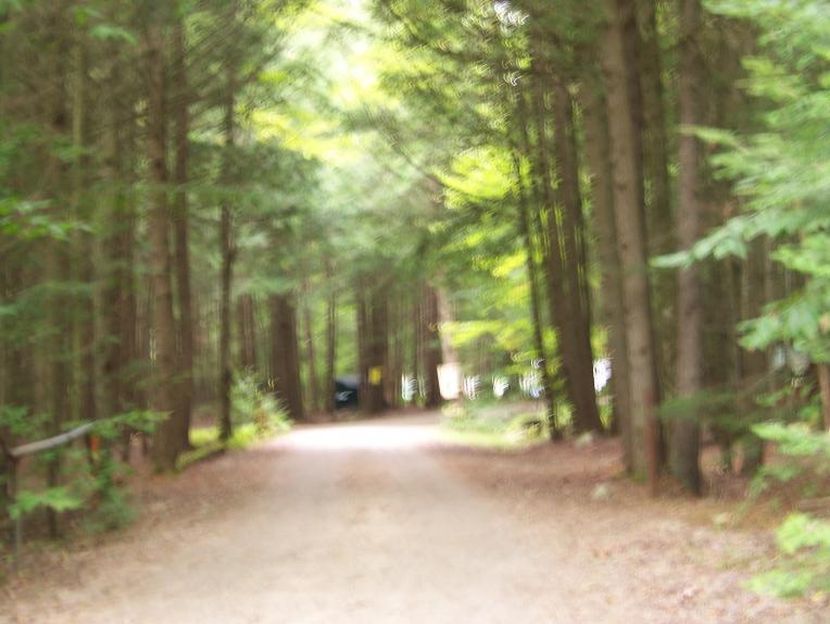 Click image for larger version  Name:9-18-11 Blueberry Pond Campground Pownal Me (1).jpg Views:65 Size:54.6 KB ID:9523