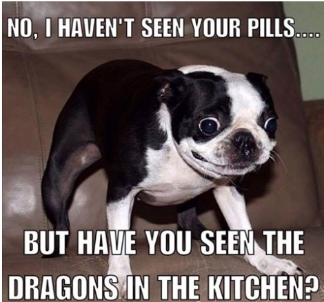 Click image for larger version  Name:WiredDog.jpg Views:124 Size:141.5 KB ID:99189